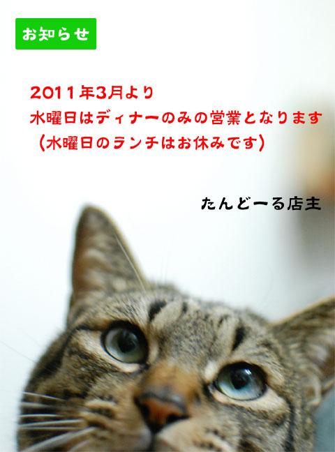 110301_03.jpg